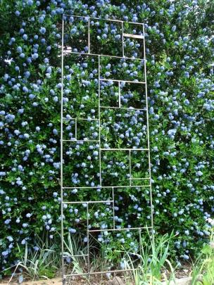 Mondrian Lithe - 2' W x 6 'H